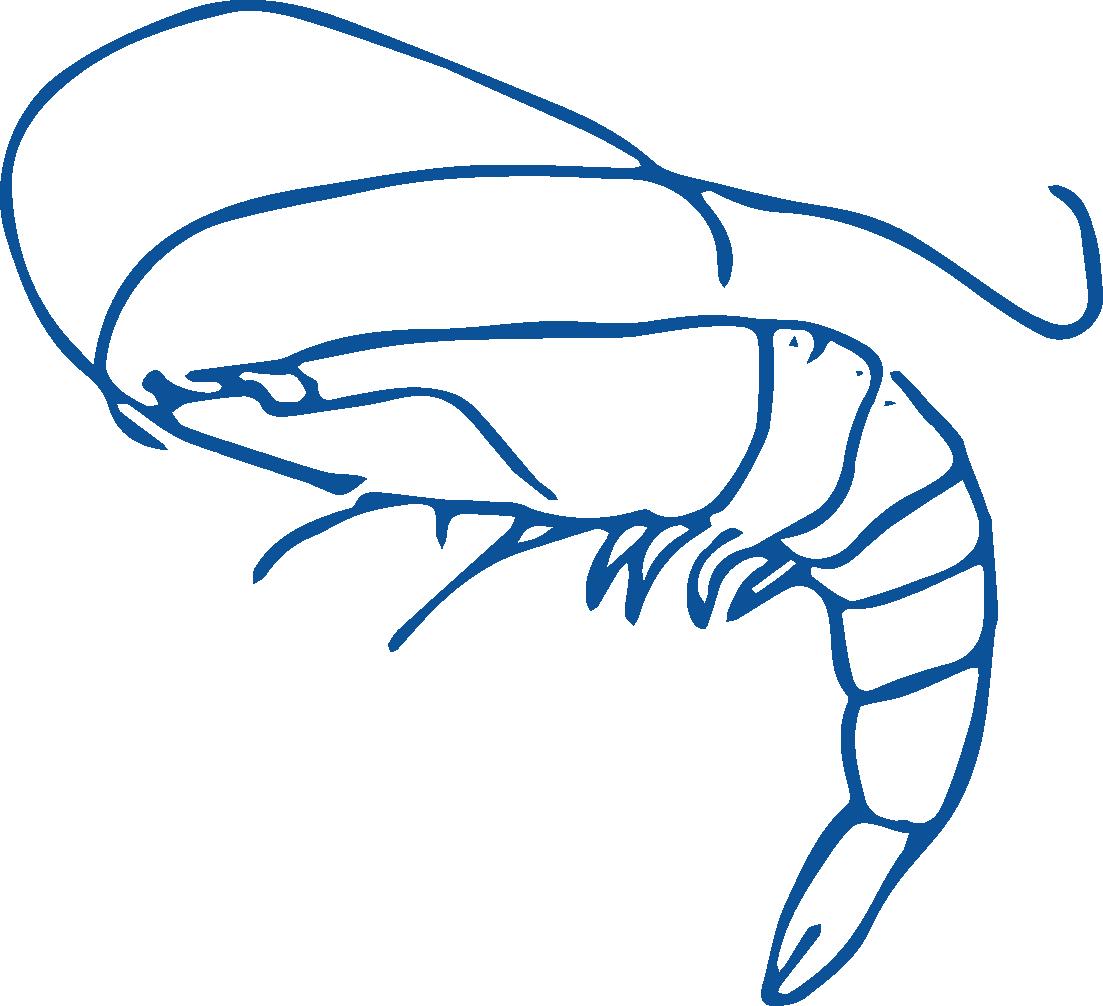 Shrimp Shack
